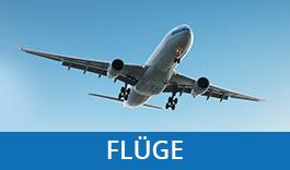 Fluege 265x156
